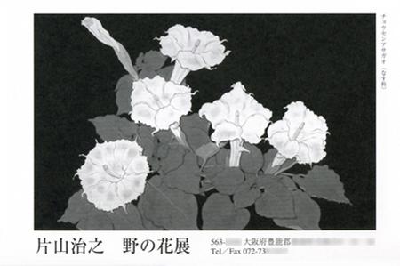 写真:img_20101108.jpg