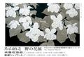 写真:hp-2013_11_7-katayama-dm.jpg