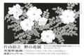 写真:hp-2014-11-6-Katayama.jpg