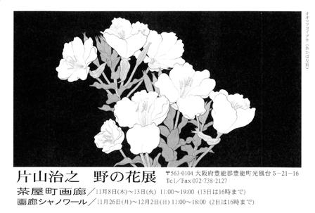 写真:hp-2012_11_8-katayama.jpg