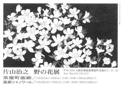 写真:hp-2015_11_5-katayama.jpg